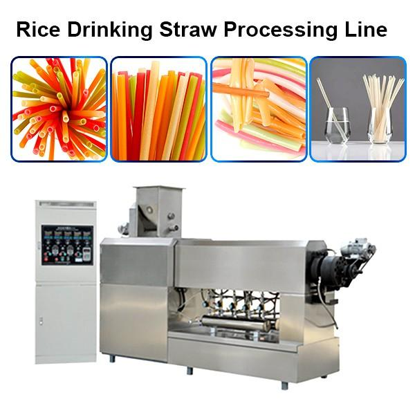 200-250kg/H Big Capacity New Material Edible Straws Biodegradable Rice Tapioca Straw Making Machine #1 image