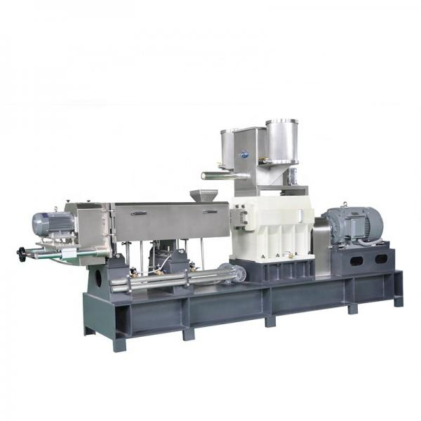 Screw Nutritional Artificial Rice Making Extruder Machinery #1 image
