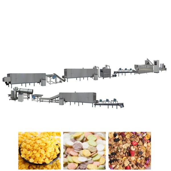 Factory Selling Corn Flakes Extrusion Machine #1 image