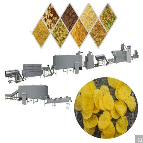 Corn Flakes Processing Line/Extruder Machine #1 image