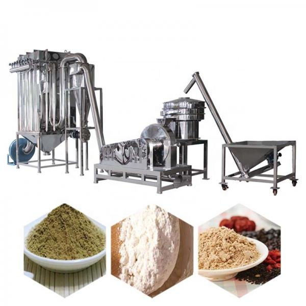 Nutritional Instant Maize Porridge Baby Powder Food Making Machine #1 image