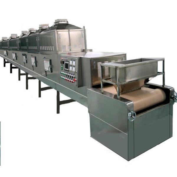 Food Automatic Belt Drying Equipment Fruit Tunnel Dryer #1 image