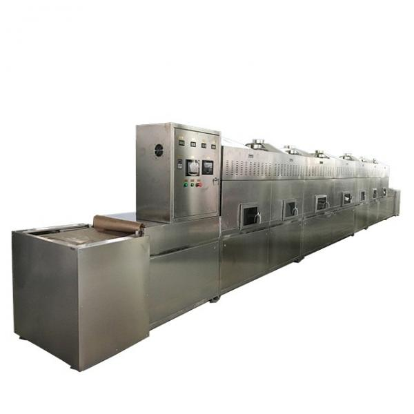 Industrial and Vacuum Microwave Sterilizng Machinery Made in China for Sale #1 image