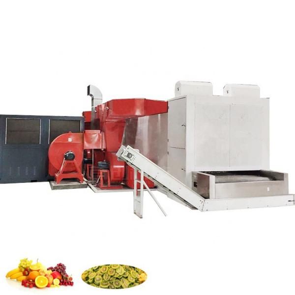 Dw Series Conveyor Mesh Belt Dryer /Drier/ Drying Machine for Ginger /Flower /Leaf #3 image